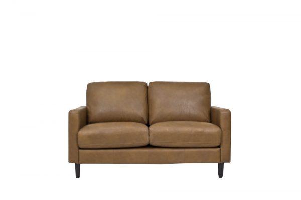 leather tan sofas 2 seat